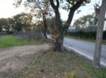 Cepagatti -  Terreno 9 locali € 80.000 T902